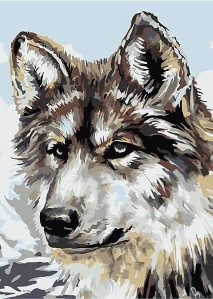 Раскраска по номерам Серый волк - Купить оптом в компании ...