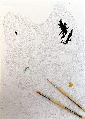 Раскраска по номерам Серый волк - фото 10963