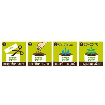 Лаванда ароматная набор для выращивания - фото 12747