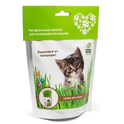 Happy Plant Трава для кошек - фото 12937