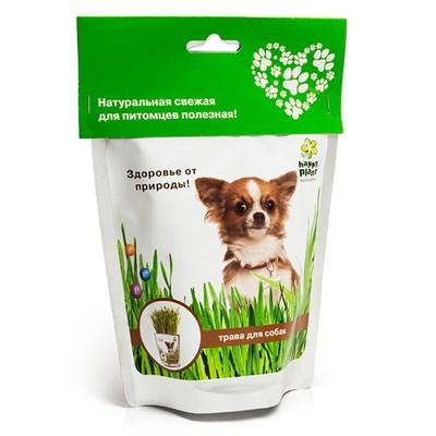 Happy Plant Трава для собак - фото 12946