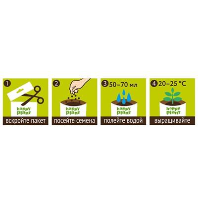 Подарочный набор для выращивания Настурция очаровательная - фото 13020