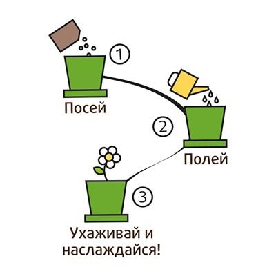 Наборы для  выращивания  Вырасти  меня  Сад Троллей Незабудка  Алмаз ( Горшок) - фото 13152