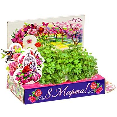 Подарочный набор Живая открытка  8 марта Букет тюльпанов - фото 13428
