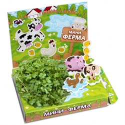 Детский развивающий набор для выращивания Мини-ферма - фото 13481