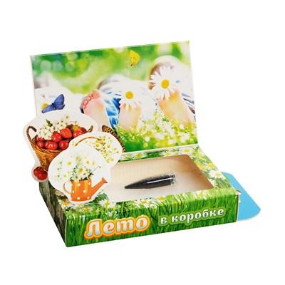 Подарочный набор Живая открытка Лето в коробке - фото 13500
