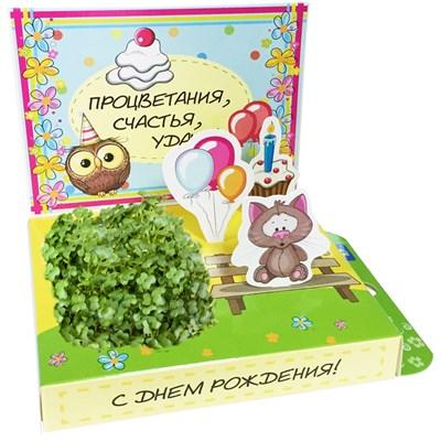 Подарочный набор С Днём рождения! (Котик) - фото 13507
