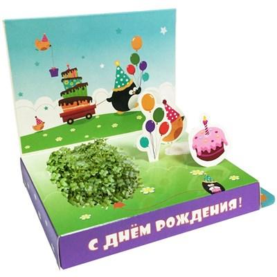 Подарочный набор С Днем рождения! (Пингвинчик) - фото 13512