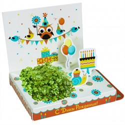 Подарочный набор С Днем рождения! (Совенок) - фото 13517