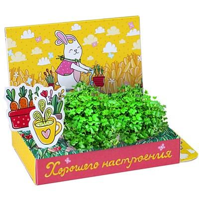 Подарочный набор Живая открытка Хорошего настроения! - фото 13538