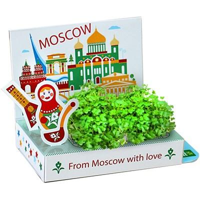 Подарочный набор Живая открытка  Москва №1 - фото 13553