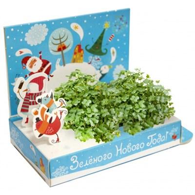 Подарочный набор Живая открытка  Зеленого Нового года - фото 13558