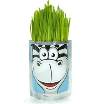 Happy Plant Сафари Зебра - фото 13672