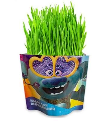 Набор для выращивания «Вырасти меня» Тролли Цветан - фото 13693