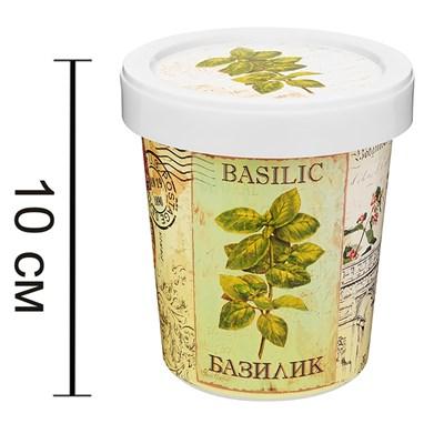 Набор для выращивания Базилик - фото 13926