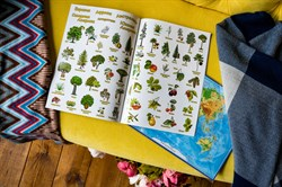 Детский атлас мира с наклейками. Растения - фото 14504