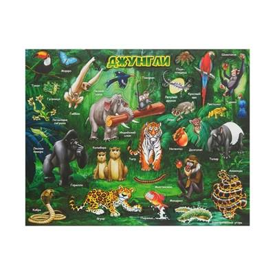 Магнитный пазл. Животный мир джунглей - фото 14527