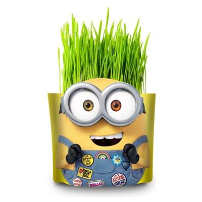 Набор для выращивания «Вырасти меня!» Миньоны Боб  - фото 14886