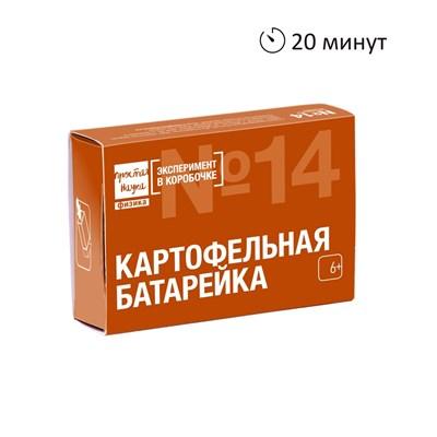 Картофельная батарейка. Эксперимент в коробочке - фото 16228