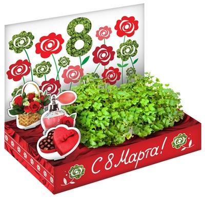 Подарочный набор 8 Марта Розы - фото 16854