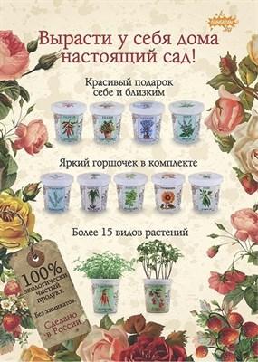 Плакат Rostokvisa - фото 6288