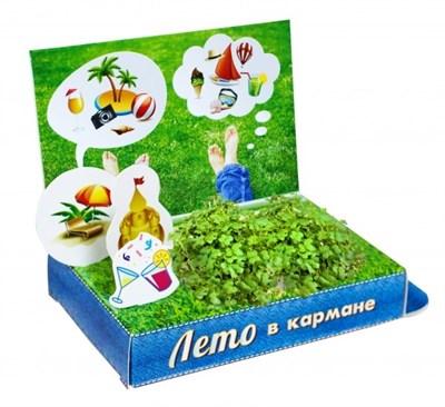 Подарочный набор Живая открытка Лето в кармане - фото 7083