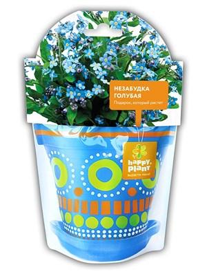 Незабудка голубая набор для выращивания - фото 8008