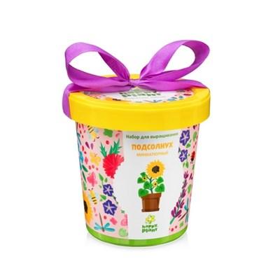 Горшок Подсолнух миниатюрный набор для выращивания - фото 8988