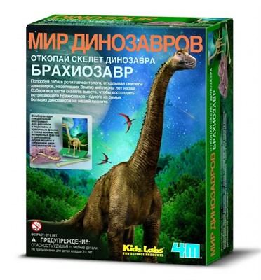 Скелет Брахиозавра - фото 9320