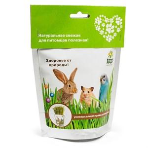 Happy Plant Трава для животных
