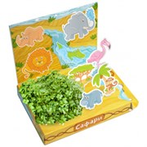 Детский развивающий набор для выращивания  Сафари