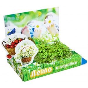 Подарочный набор Живая открытка Лето в коробке