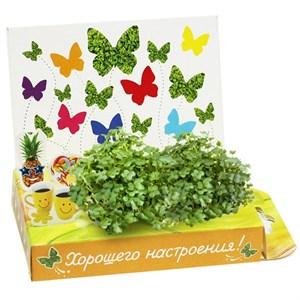 Подарочный набор Живая открытка Хорошего настроения