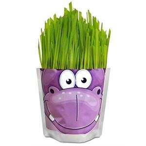 Happy Plant Сафари Бегемот