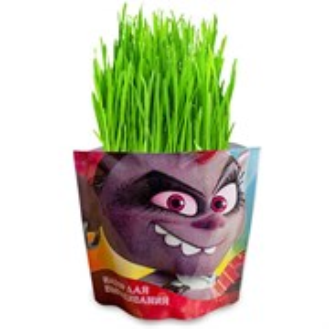 Набор для выращивания «Вырасти меня» Тролли Рокс