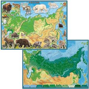 Географический пазл Животные и Природные Зоны РФ