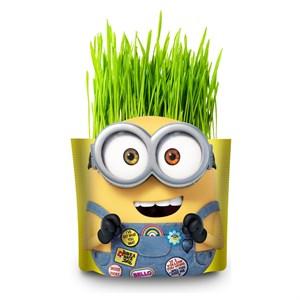 Набор для выращивания «Вырасти меня!» Миньоны Боб