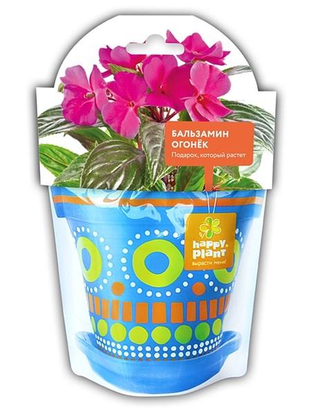 Бальзамин огонек набор для выращивания