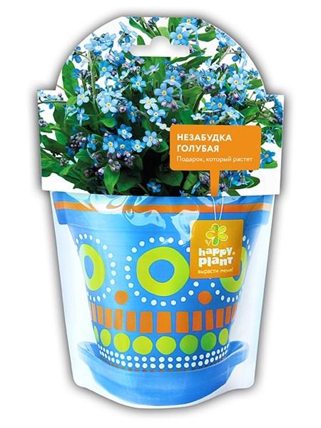Незабудка голубая набор для выращивания
