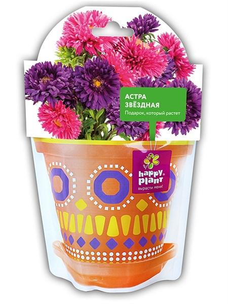 Астра звездная набор для выращивания Happy Plant