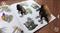 3D Живые наклейки Африка и Сибирь - фото 8098